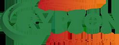 Crypton Auto Gas Service