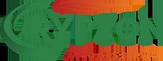 crypton auto gas service logo